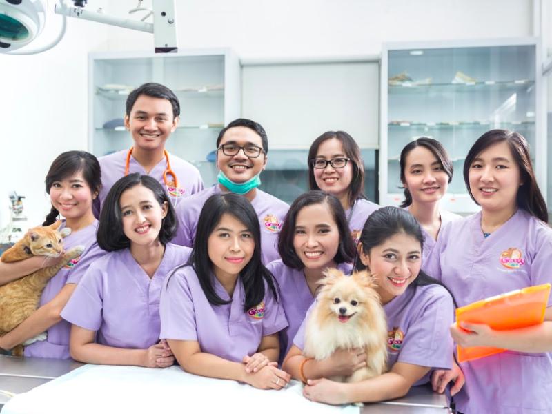 Best English Speaking Vet Clinics In Jakarta Flokq Coliving Jakarta Blog