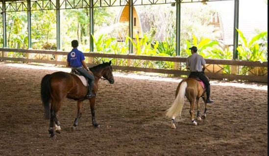 Horse Riding in Jakarta