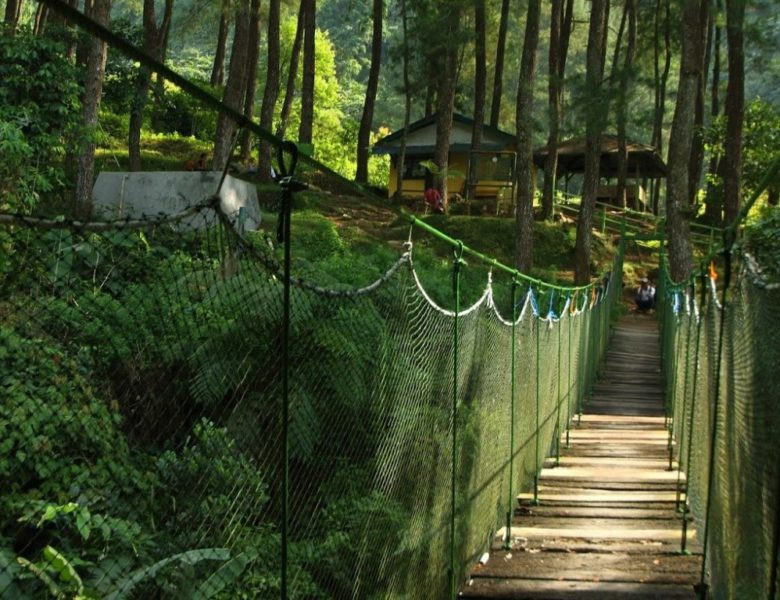 When in Bogor: Things to Do