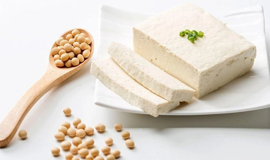 indonesian soy product - tahu