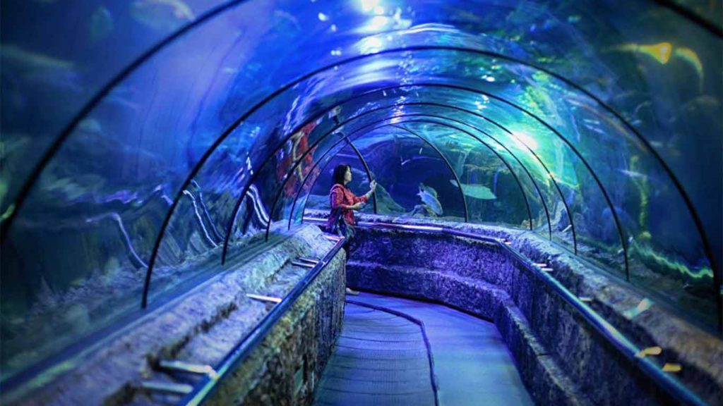 Seaworld Ancol view