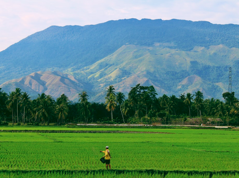 7 Industri yang Menjanjikan di Indonesia