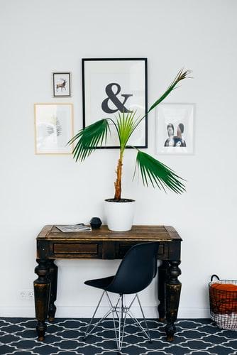dekorasi dinding foto minimalis