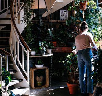 Tips Mengubah Apartemen Menjadi Eco-Friendly
