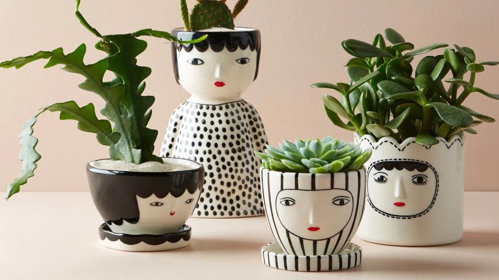 tips dekorasi sukulen kaktus, pot sukulen kaktus