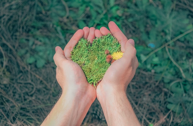Mulai Gaya Hidup Ramah Lingkungan Dengan 12 Langkah Ini!