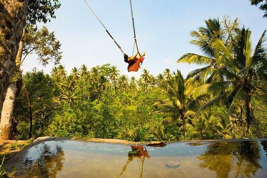 aloha bali swing