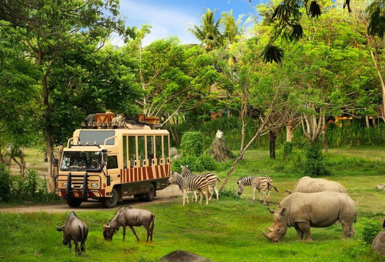 Bali Safari and Marine Park Entrance Ticket Prices Update 2021