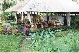 restoran terbaik dekat bali zoo sacred rice