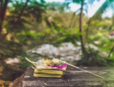 Wajib Tahu! Ini 10 Kafe dan Restoran Hits di Sekitar Lapangan Renon Bali