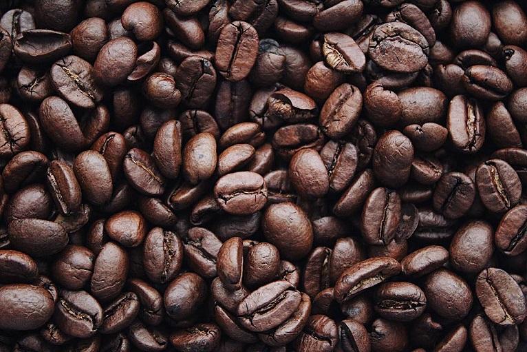 ilustrasi biji kopi bali kintamani