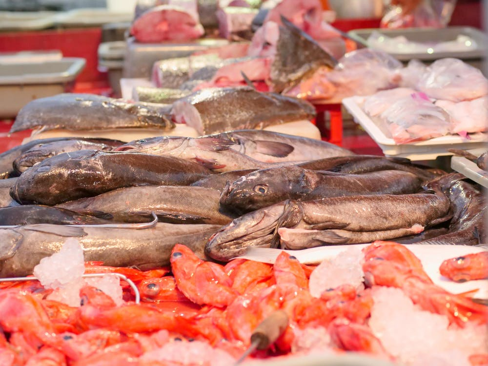 pasar ikan bali